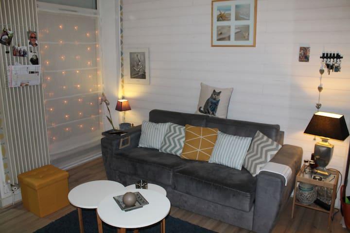 Appartement maison avec beau patio - Nantes - Hus