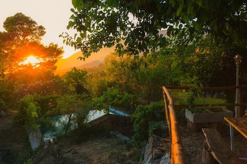 organic farm in sicily mountain , cuca madonie