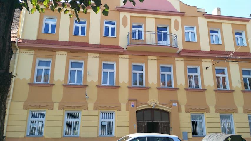 Downtown Teplice Apartment  U Novych Lazni street - Teplice - Wohnung