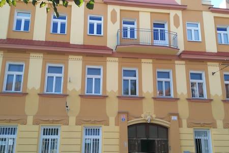 Downtown Teplice Apartment  U Novych Lazni street - Teplice - 公寓