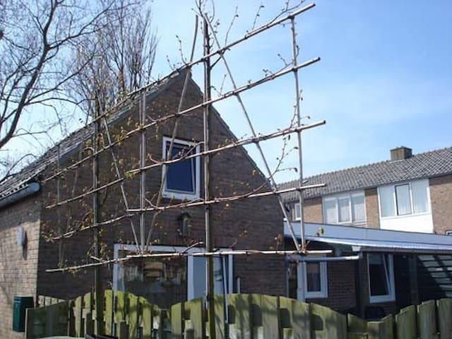 Vakantiehuisje in Zoutelande - Zoutelande - Zomerhuis/Cottage