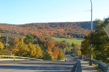 Angel Heights - Oneonta/Cooperstown (2) - Oneonta