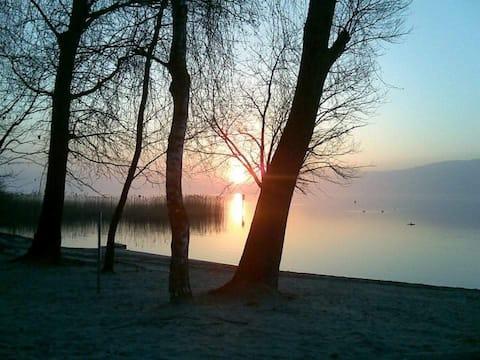 La Maisonnette au bord du lac