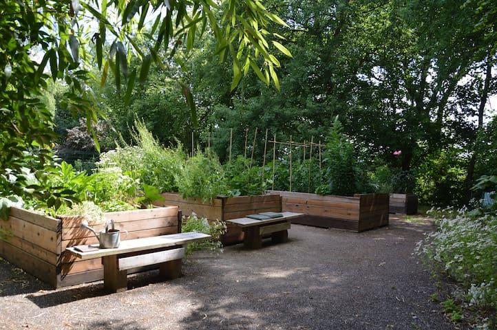 Comme dans un jardin anglais, près de Limoges. - Isle