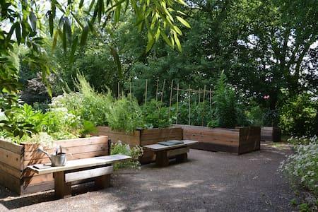 Dans un jardin anglais tout près de Limoges. - Isle - Dom