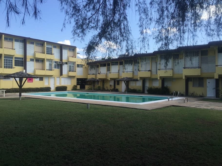 Cool Green Apartments For Rent In Kingston Saint Andrew