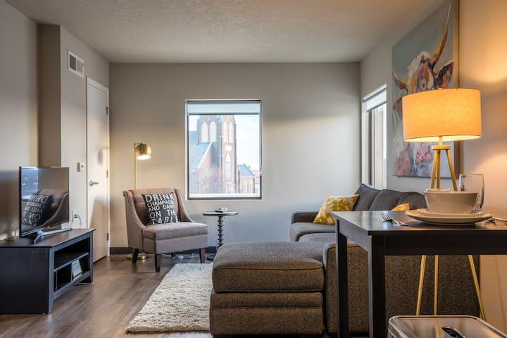 """Luxury """"Bullseye"""" 1BD Flat (204) - Des Moines - Apartment"""