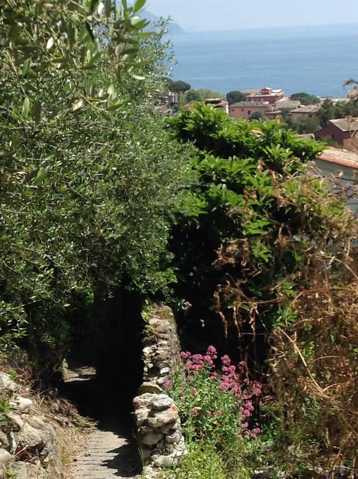 Casa con vista a Monterosso al Mare
