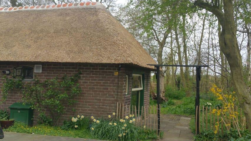 LaVendel zomerhuis met een ruime afgebakende tuin