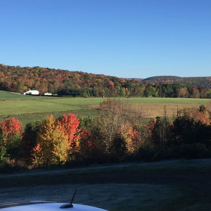 Fall View from Deck