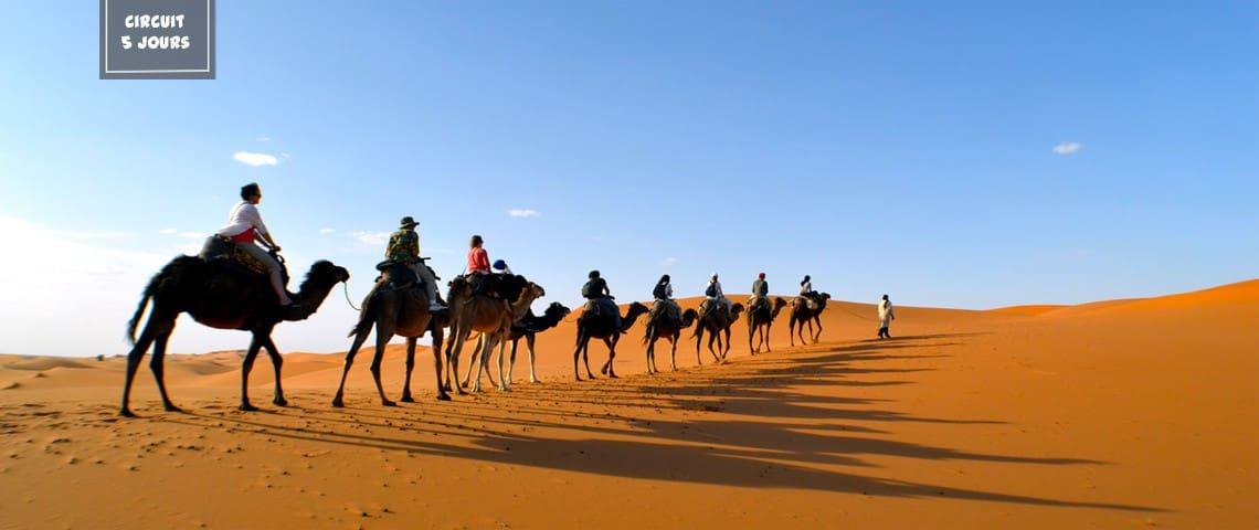 Desert Vie