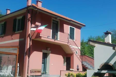 STUDIO - MTB, Enduro, Freeride, Climb & Dive - Vezzi Portio - Haus