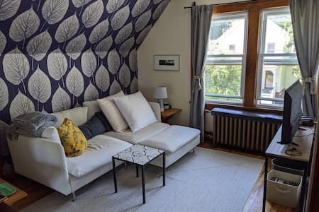Large, bright 1BR close to Main St and Roundhouse