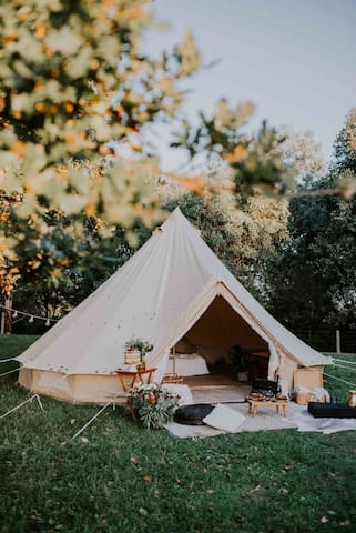 Canvas Glamping @ Wellness Festival