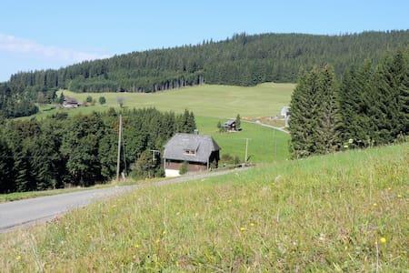 """Historisches Ferienhaus """"Seiler-Haus"""" - Titisee-Neustadt"""