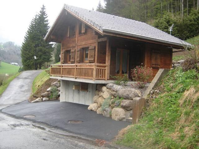 Chalet typique savoyard - Abondance - House
