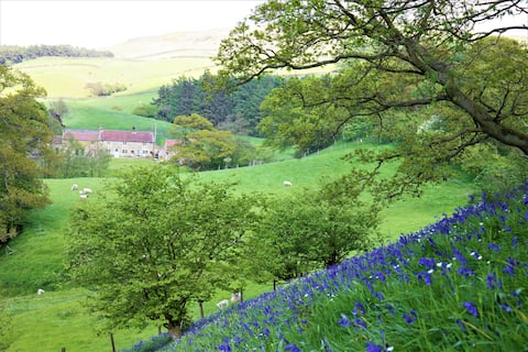 Bluebells Cottage, Chop Gate, North Yorkshire.