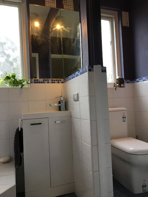 Bathroom with a wall dividing toilet and vanity