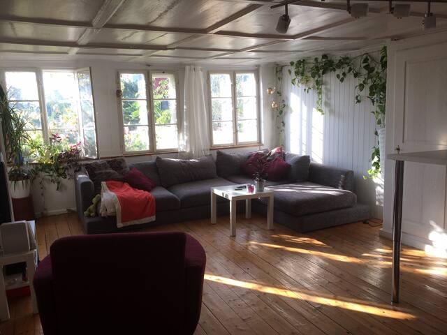 Charming apartment at Lake Zurich