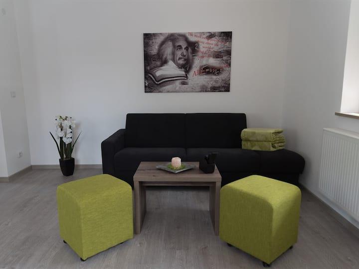FrankenFeWo - Einstein ground floor