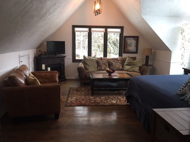 Newly listed! Cozy remodeled studio on river!
