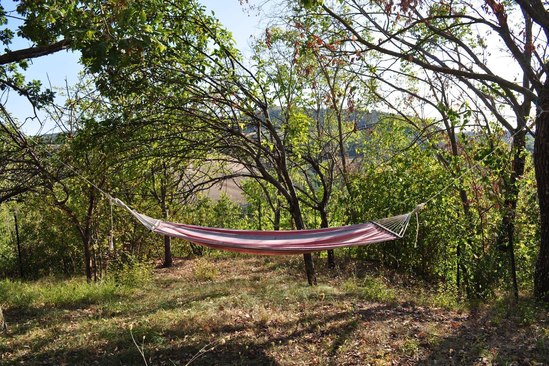 Relax è un'amaca sotto gli alberi ...
