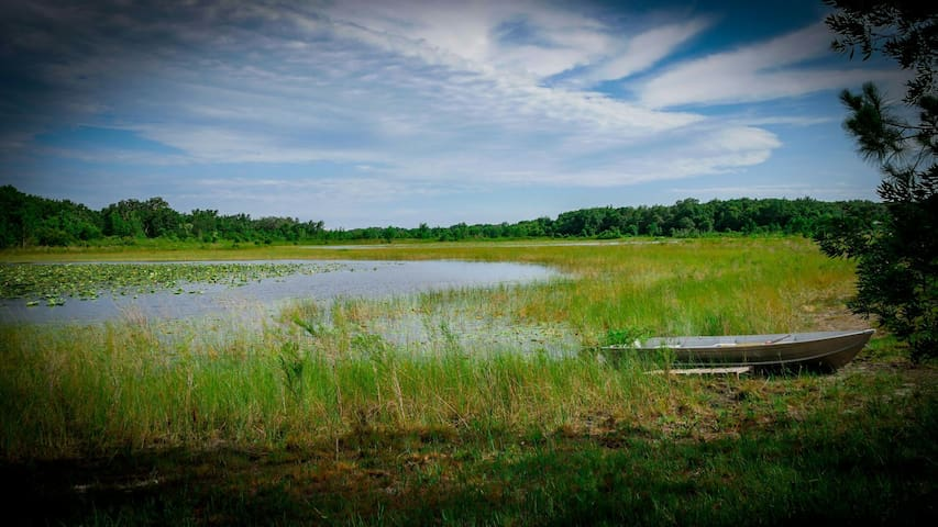 Experience LIFE at Sabina's Grove - Groveland