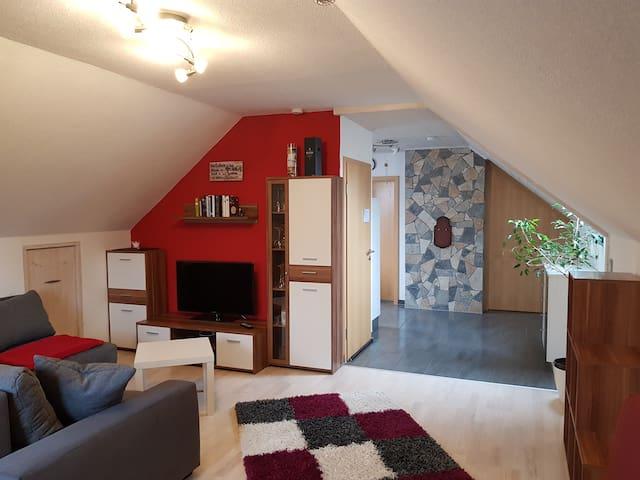 Moderne 2  Zimmer Dachwohnung im Herzen der Rhön