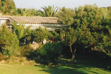 Mare e verde a Porto Cervo - Province of Olbia-Tempio - Villa
