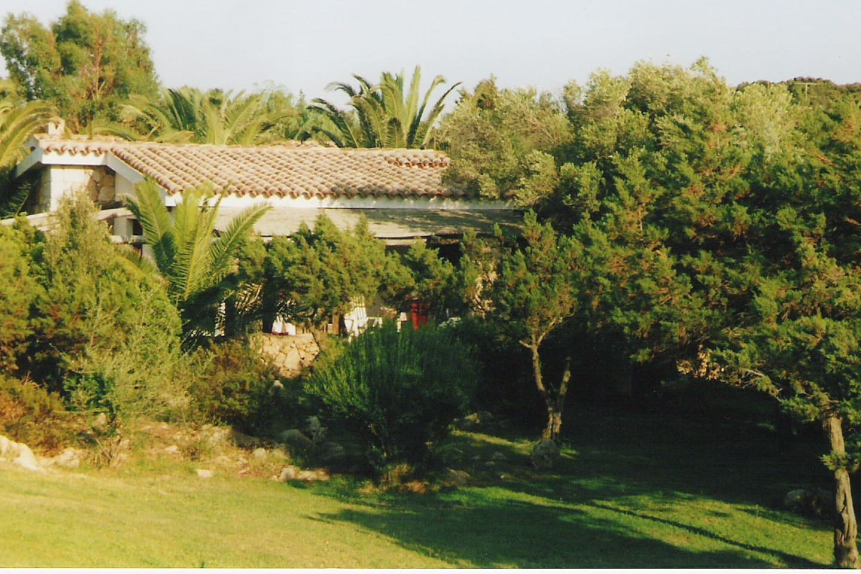 esterno, giardino