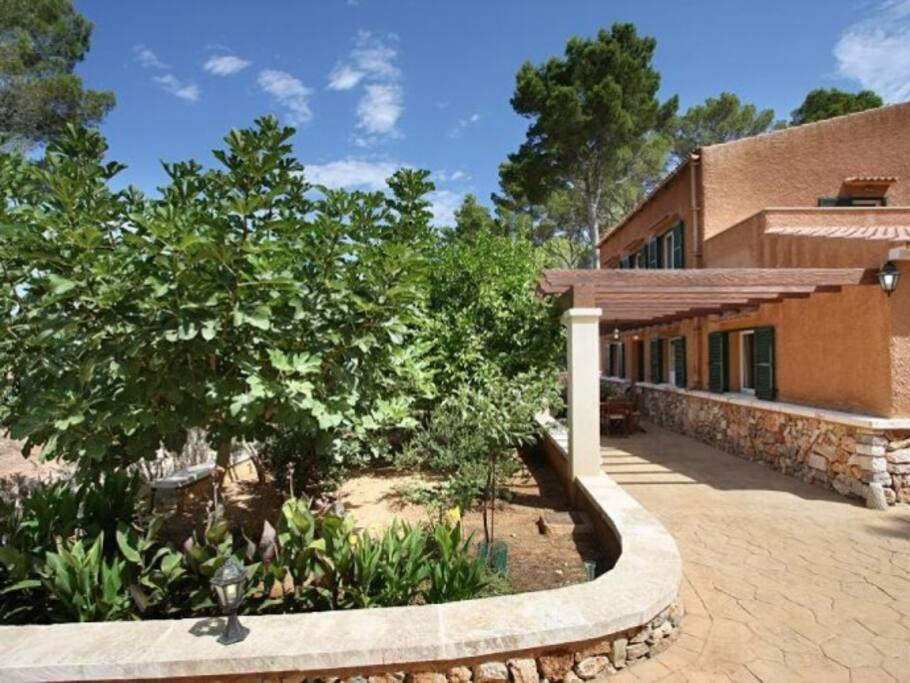 Finca Perello - Felantix, Mallorca