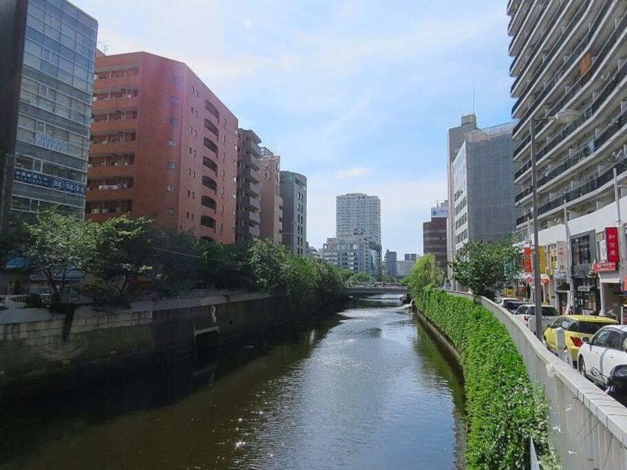 'Meguro river' 1min