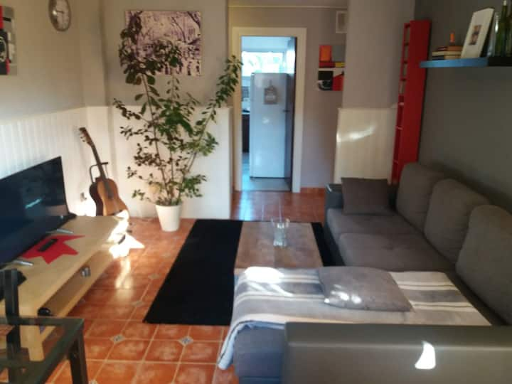 Single room in the La Laguna center near airport.