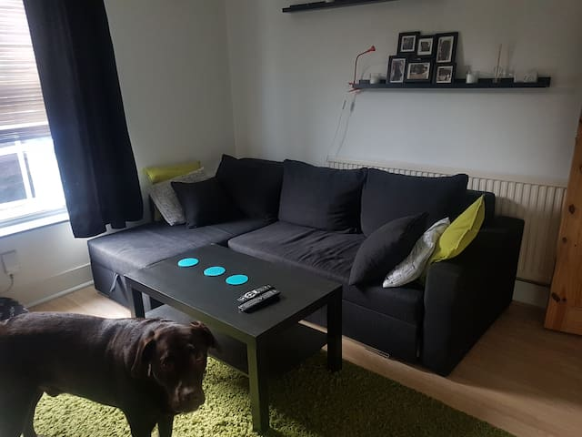 Nice and cosy house in town centre