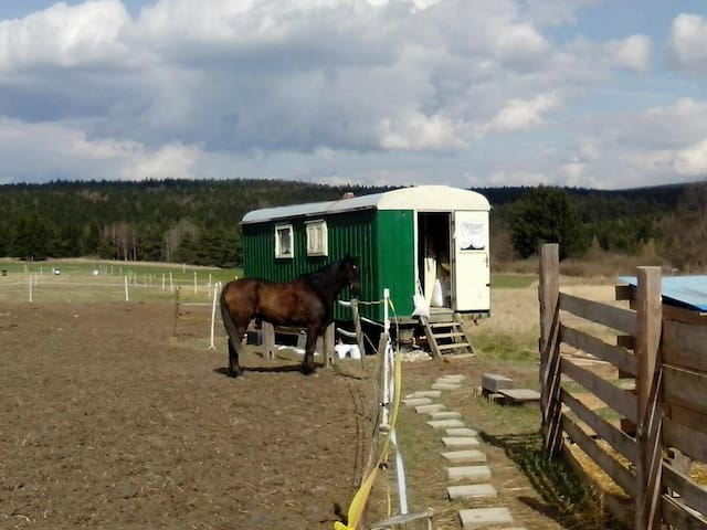 Maringotka na ranči u lesa. - Krasová - Τροχόσπιτο