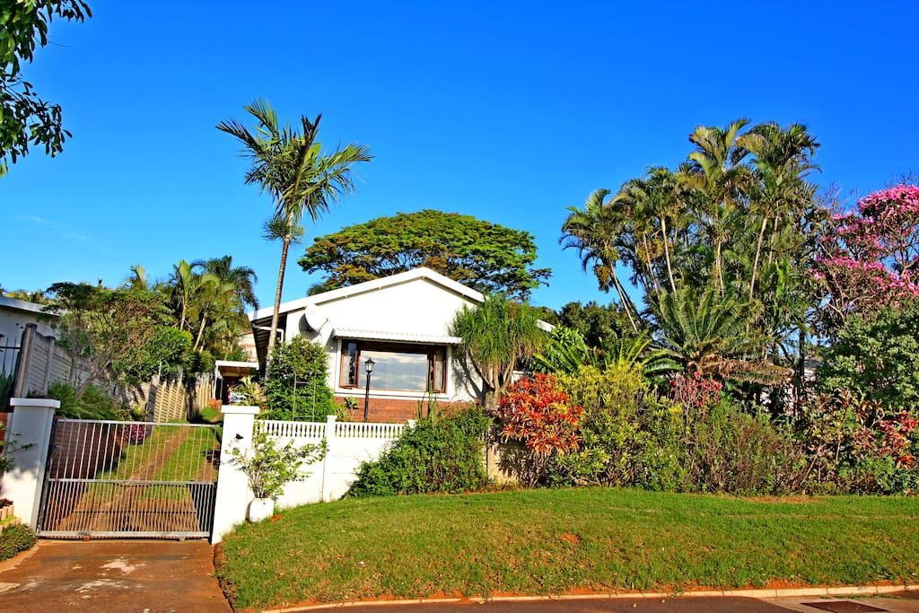 Dolphin Palms at 15 Savell Avenue