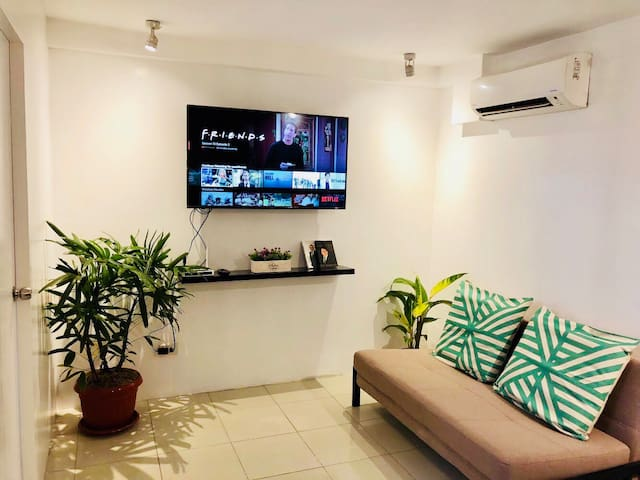 Two bedroom tropical vibe with NETFLIX in Cebu!