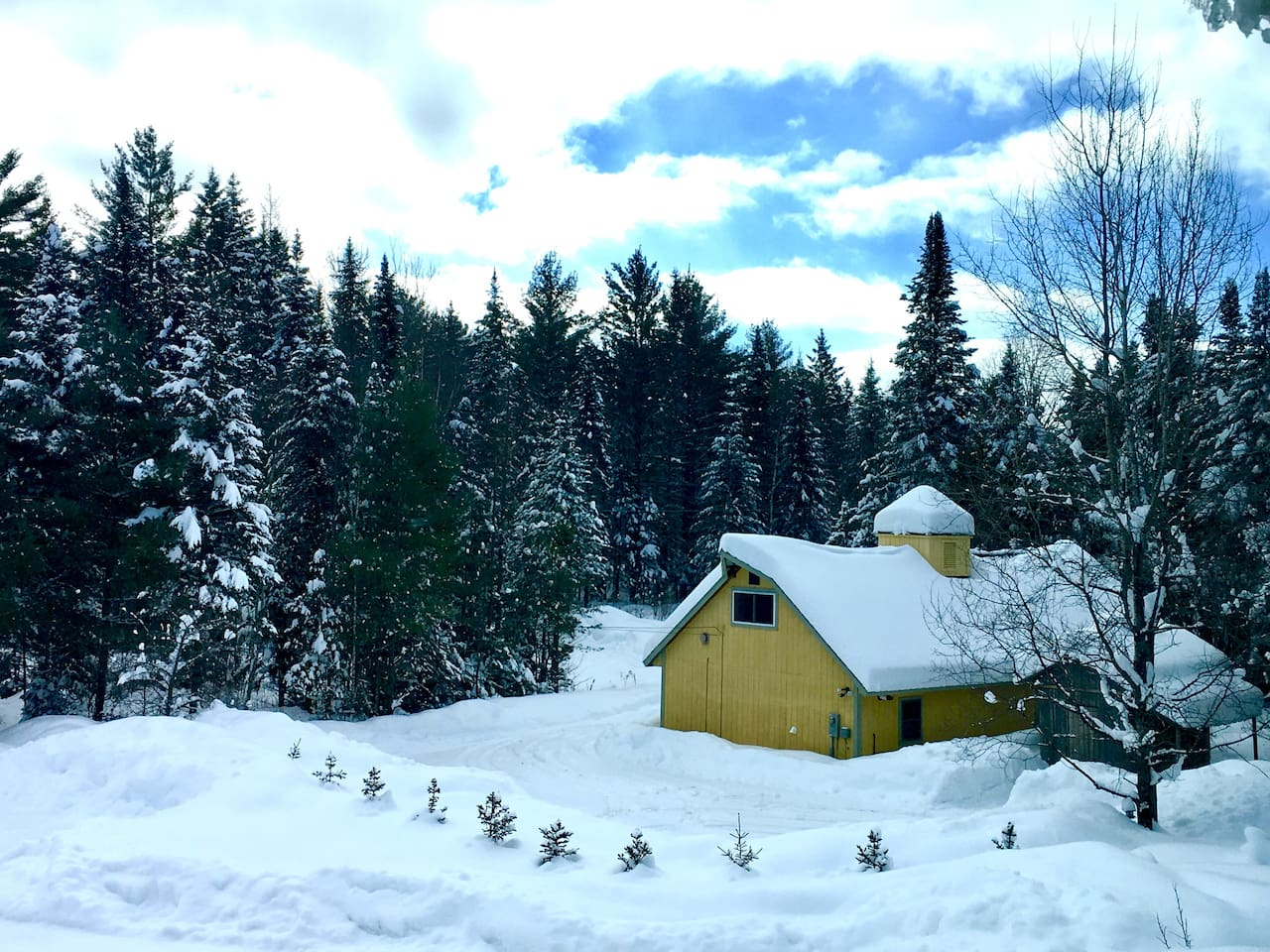 Classic Vermont Setting... back of the Burke Sugar Shack