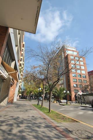 Calle Francisco Antonio Encina