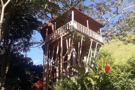 La Casa en el Árbol en Finca Hotel Villa del Lago