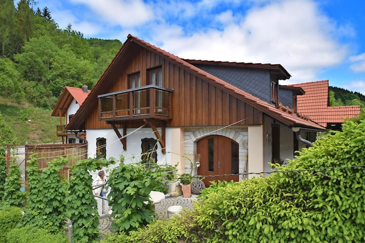 Modern and cosy apartment in the beautiful Thuringian Forest