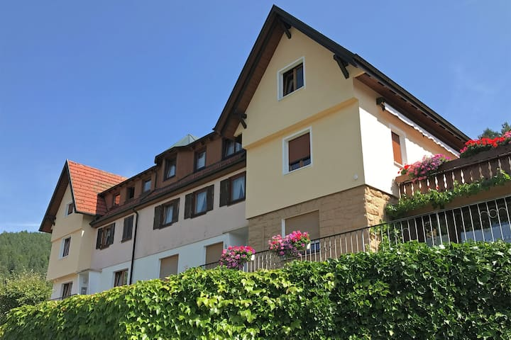 Cosy Apartment in Baiersbronn with terrace and garden