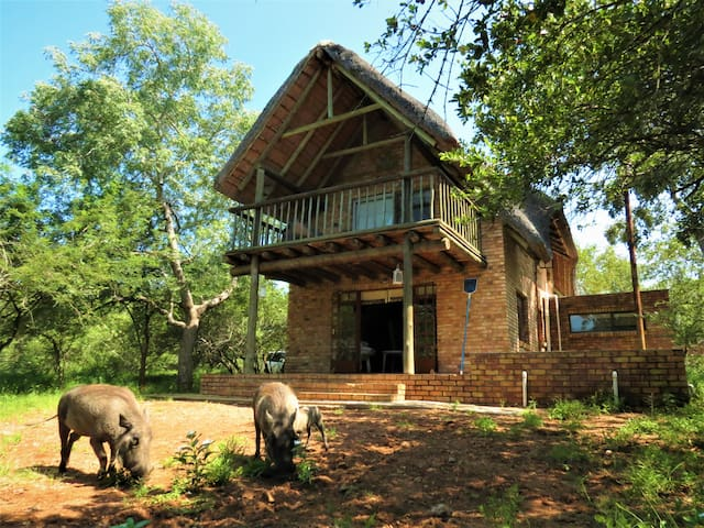 Mindara Lodge , Marloth Park