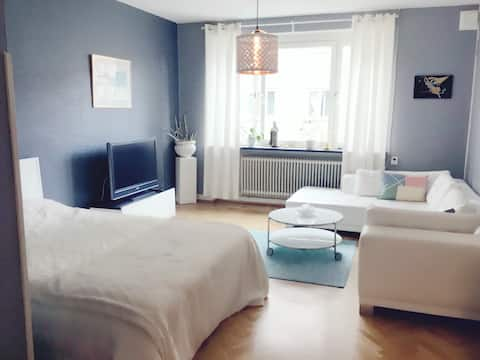 Cozy and comfartable apartment near city!