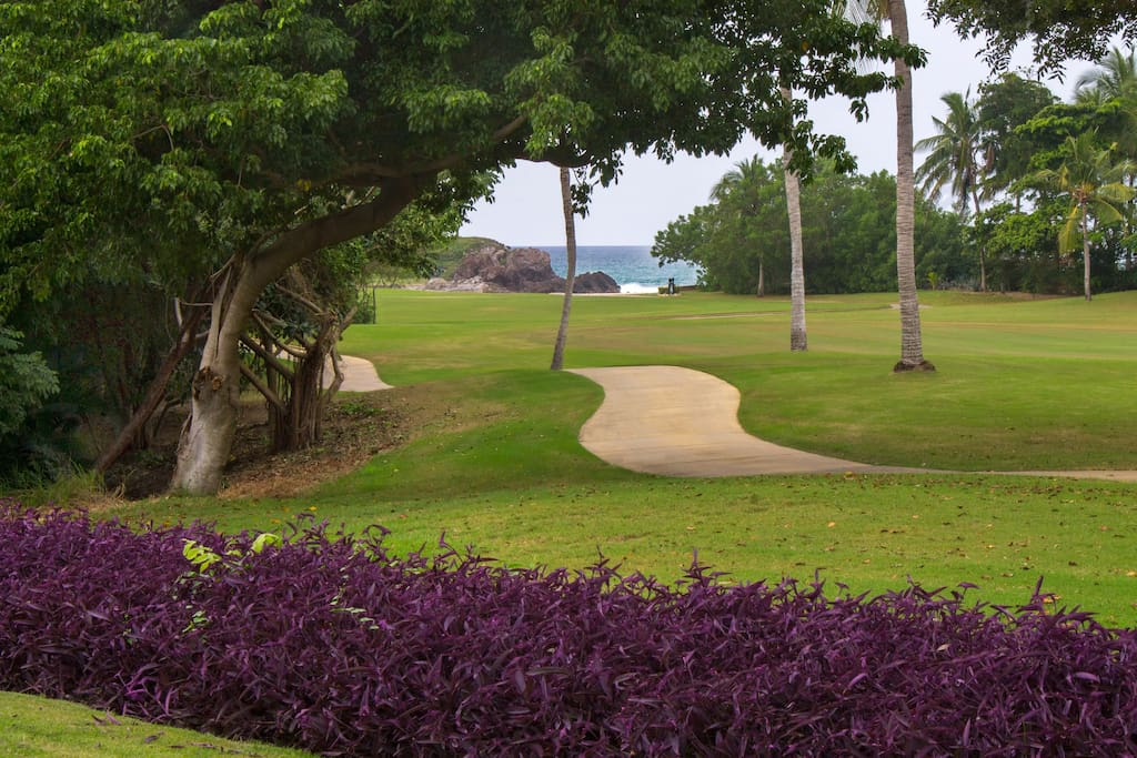 Only a few minute walk along the cart path to the Tail of the Whale island green.