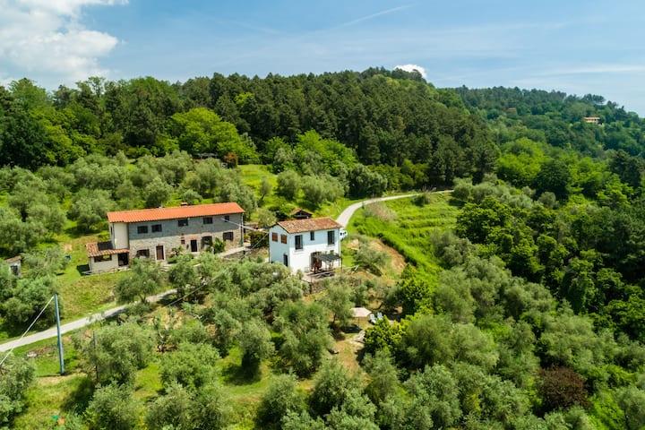 Grande maison de vacances avec piscine à Pescia