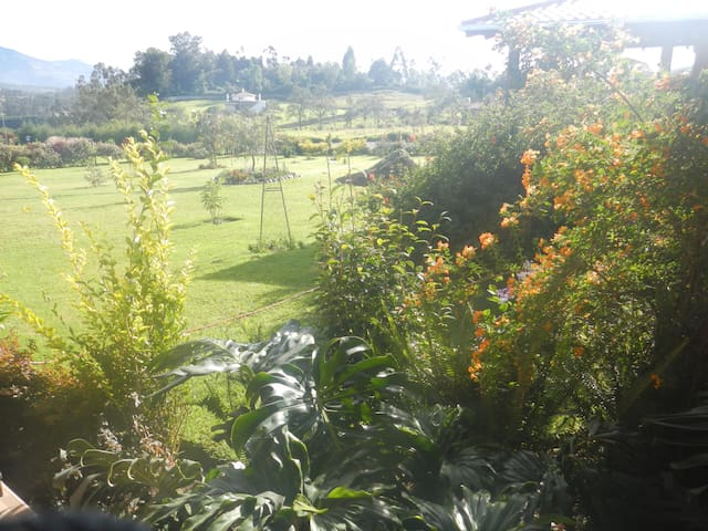 Mountain View Garden - Otavalo