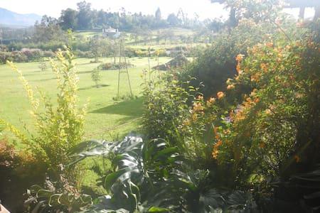 Mountain View Garden - Otavalo - Dům