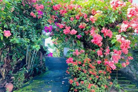 Recanto das Flores - Chapada dos Veadeiros
