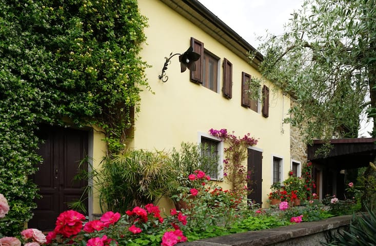 stilvolles Toskana-Landhaus im Olivenhain